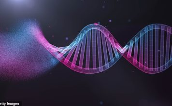 In this study, the computer system taught itself to analyze not only the known genes, and their supporting DNA, but also the excess