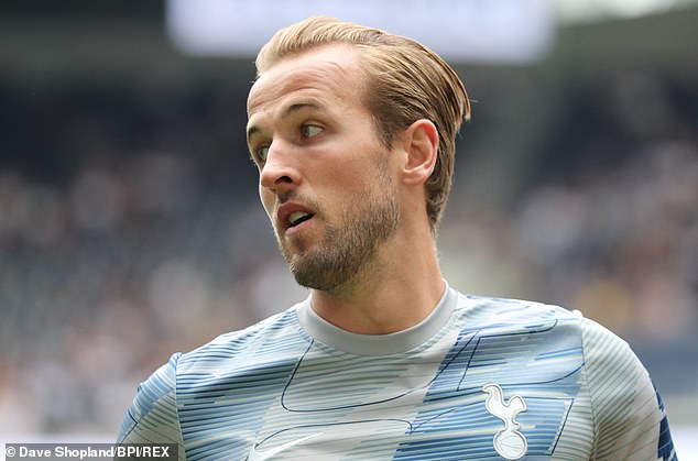 Dimitar Berbatov has warned Harry Kane he may need to quit Tottenham to win trophies