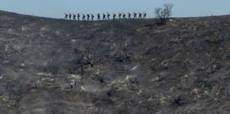 Fire crews walk along a blackened ridge as they battle the Getty fire Monday, Oct. 28, 2019, in Los Angles. (Associated Press)