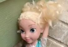 Emily Madonia said a doll of Frozen