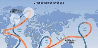 Formally known as the Atlantic Meridional Overturning Circulation (AMOC), it powers the Gulf Stream that brings warm water from the Gulf of Mexico to the northeastern US coast. Experts warn that it is slowing and could increase sea levels along the northeastern US coast