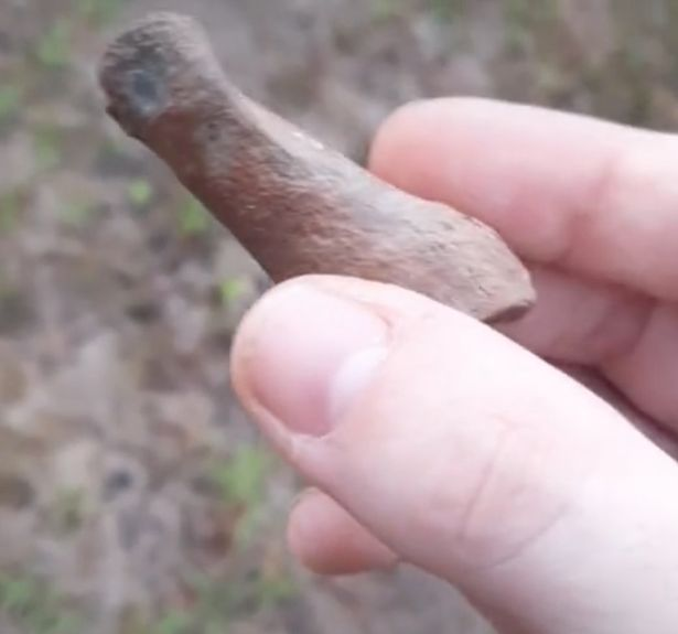 The object is alleged to be a thumb bone fossil from Bigfoot