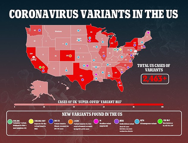 Houston, Texas, is the first city in the US to identify all of the major coronavirus variants spreading in the US, according to a soon-to-be-posted pre-print. The US has reported 2,463 confirmed cases of