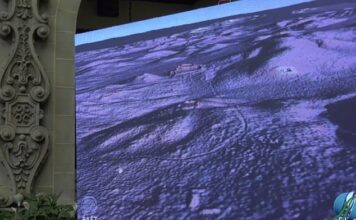 At a press conference last week, researchers in Guatemala shared laser images from Tikal, showing the remains of buildings hidden under the jungle