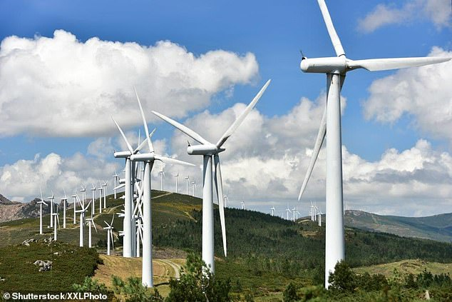 Ripple Energy lets customers become co-owners of the wind farms that supply their energy