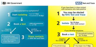 A government diagram explain how the NHS Test and Trace system will work