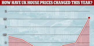 House prices recovered from their lockdown slump to hit their highest levels on record in July