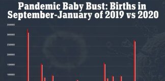 New preliminary federal data for 2020 from January to September shows that almost every single U.S. state saw a decline birth rates compared to 2019, aside from Delaware and Rhise Island