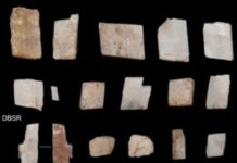 Shards of calcite crystal, likely used in rituals, were among the artifacts found at Ga-Mohana Hill North Rockshelter in the southern Kalahari
