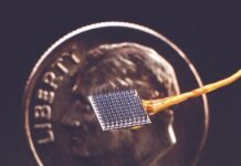 Researchers are using tiny electrode arrays (pictured) to record signals from the motor cortex of the brain. Those signals can then be used to control robotic prostheses, computers or other devices. The hope is that such a system may one help restore communication and movement in people with paralysis due to injury or illness