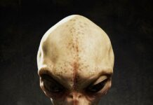 Picture of extraterrestrial life