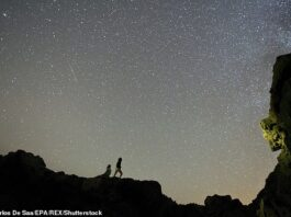 The Delta Aquariids meteor shower will peak on Wednesday night ¿ providing the UK with a light show of up to 20