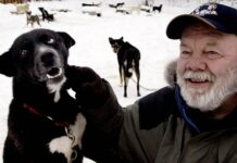 Author Gary Paulsen sits with his favorite Alaskan husky, Flax, at his Willow, Alaska, home on Feb. 10, 2005. (Associated Press)